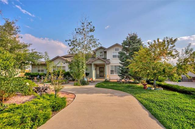 1245 Bowstring Road, Monument, CO 80132 (#9070685) :: Tommy Daly Home Team