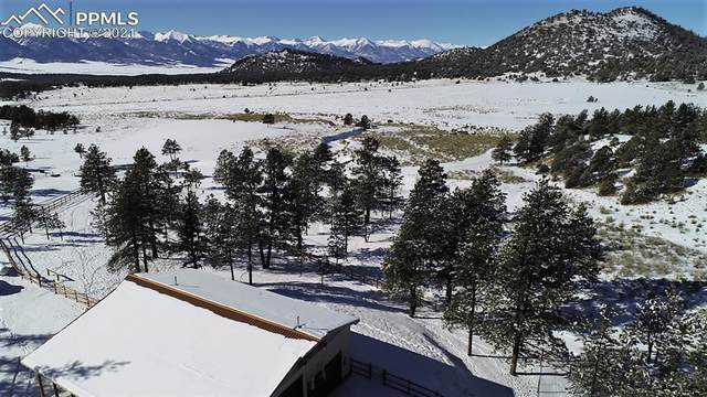 58 County Road 325 Road, Westcliffe, CO 81252 (#9072222) :: Venterra Real Estate LLC