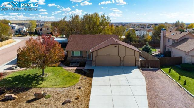 6995 Battle Mountain Road, Colorado Springs, CO 80922 (#9075069) :: Harling Real Estate