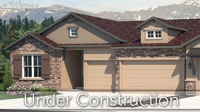 1678 Lazy Cat Lane, Monument, CO 80132 (#9089012) :: Tommy Daly Home Team