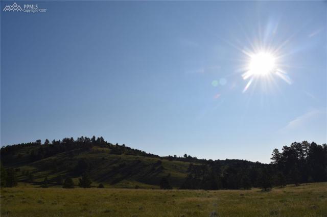 Spruce Lane, Canon City, CO 81212 (#9120238) :: 8z Real Estate