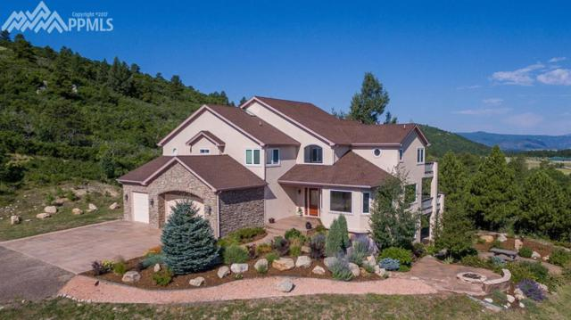 14232 Straight Path Lane, Larkspur, CO 80118 (#9157652) :: Action Team Realty