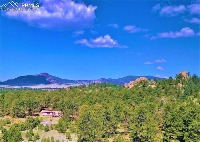 2325 Doe Valley Road, Guffey, CO 80820 (#9164974) :: Compass Colorado Realty