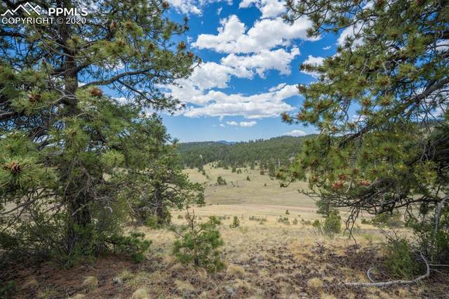 Lot 25A Julia Road, Guffey, CO 80820 (#9165139) :: 8z Real Estate