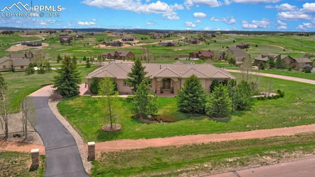 19773 Kershaw Court, Monument, CO 80132 (#9166538) :: Action Team Realty