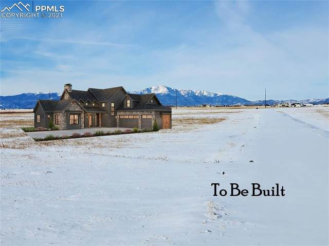 8950 Palomino Ridge View, Peyton, CO 80831 (#9167125) :: The Scott Futa Home Team