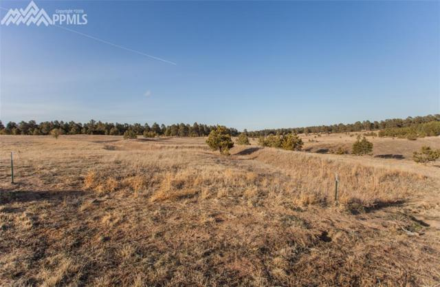 17235 Gwilym Court, Monument, CO 80132 (#9168874) :: Fisk Team, RE/MAX Properties, Inc.
