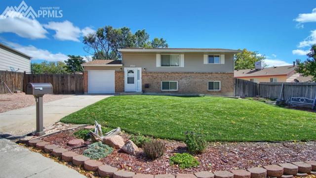 1425 Chippewa Court, Colorado Springs, CO 80915 (#9184880) :: 8z Real Estate