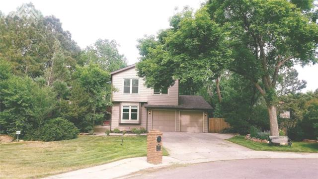 570 Wembleton Place, Colorado Springs, CO 80906 (#9207415) :: The Daniels Team