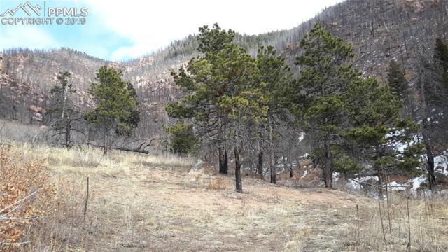 8210 Bear Dance Heights, Cascade, CO 80809 (#9230523) :: Colorado Home Finder Realty