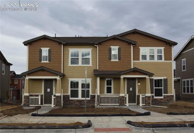 3025 Low Meadow Boulevard, Castle Rock, CO 80109 (#9231999) :: Harling Real Estate