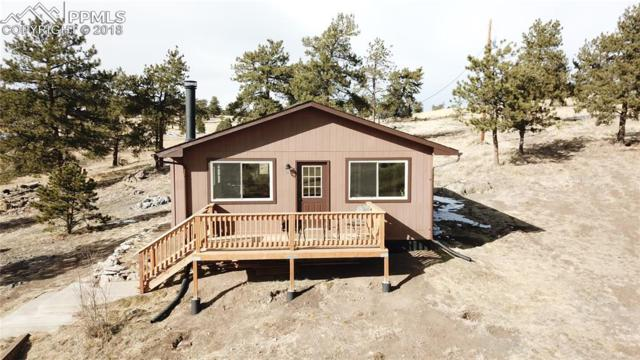 11 Valley Circle, Florissant, CO 80816 (#9238372) :: The Kibler Group