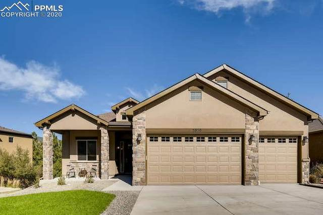 2050 Safe Harbor Court, Colorado Springs, CO 80919 (#9243867) :: Tommy Daly Home Team