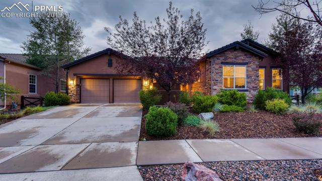 7184 Cottonwood Tree Drive, Colorado Springs, CO 80927 (#9261228) :: Action Team Realty