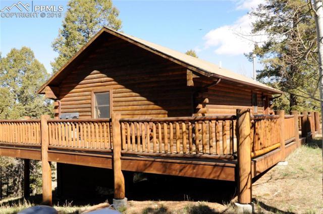 17 Deer Lake Circle, Divide, CO 80814 (#9276266) :: Fisk Team, RE/MAX Properties, Inc.