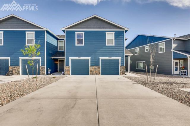 2337 Washo Circle, Colorado Springs, CO 80915 (#9290745) :: 8z Real Estate