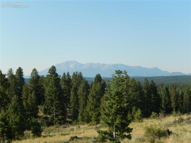 TBD Being Verified Road, Woodland Park, CO 80863 (#9324776) :: 8z Real Estate