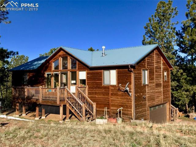 453 Maroon Lake Circle, Divide, CO 80814 (#9331058) :: Fisk Team, RE/MAX Properties, Inc.
