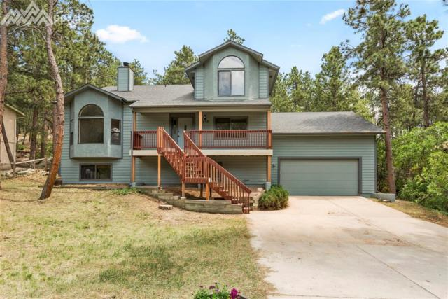 1055 Tari Place, Colorado Springs, CO 80921 (#9343213) :: Jason Daniels & Associates at RE/MAX Millennium