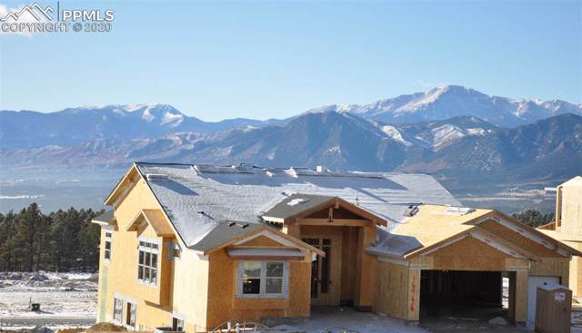 16466 Florawood Place, Monument, CO 80132 (#9376424) :: The Kibler Group