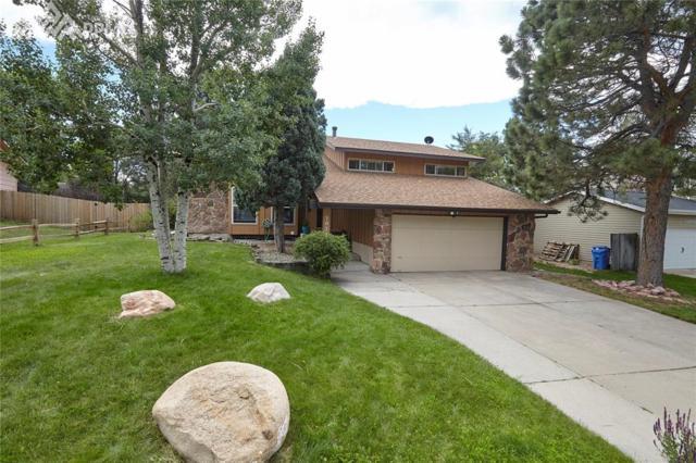 3072 Avondale Drive, Colorado Springs, CO 80917 (#9381828) :: 8z Real Estate