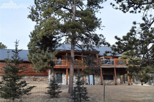 891 Black Mesa Circle, Florissant, CO 80816 (#9386280) :: 8z Real Estate
