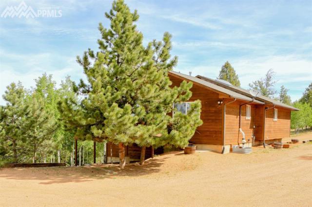 209 Utah Way, Florissant, CO 80816 (#9406835) :: 8z Real Estate