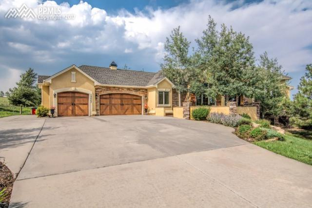 19647 Falcon Crest Court, Monument, CO 80132 (#9422537) :: 8z Real Estate