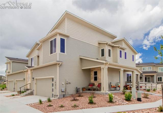 10084 Poppy Mallow Point, Colorado Springs, CO 80924 (#9439912) :: CC Signature Group