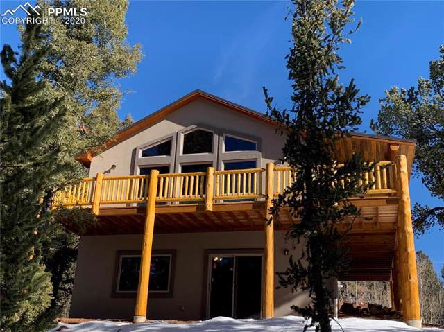 751 Horseshoe Drive, Divide, CO 80814 (#9443308) :: The Peak Properties Group
