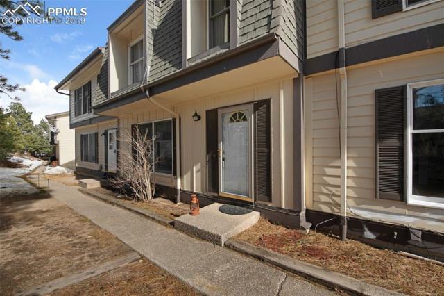 325 Raspberry Lane, Monument, CO 80132 (#9445472) :: 8z Real Estate
