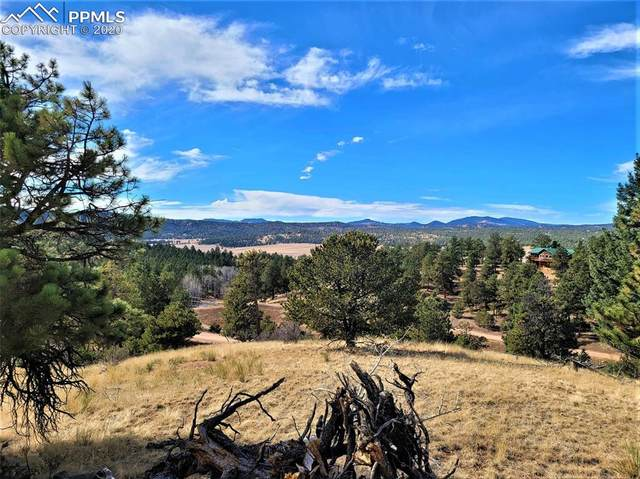 43 Snowshoe Way, Florissant, CO 80816 (#9445998) :: 8z Real Estate