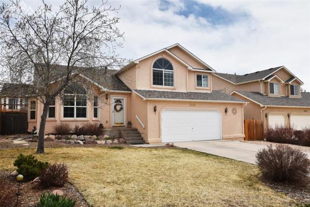 3845 Pronghorn Meadows Circle, Colorado Springs, CO 80922 (#9449595) :: The Treasure Davis Team