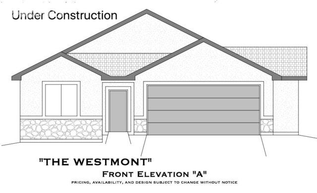 1572 Piney Hill Point, Monument, CO 80132 (#9462136) :: 8z Real Estate