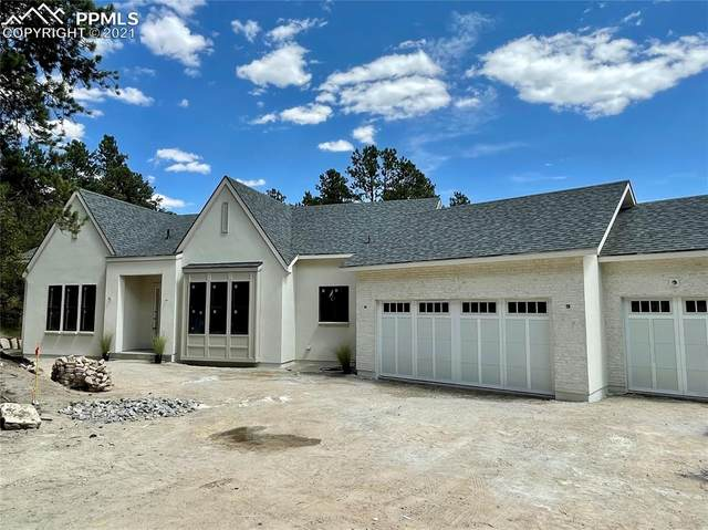 640 Larks Nest Way, Monument, CO 80132 (#9464790) :: Tommy Daly Home Team