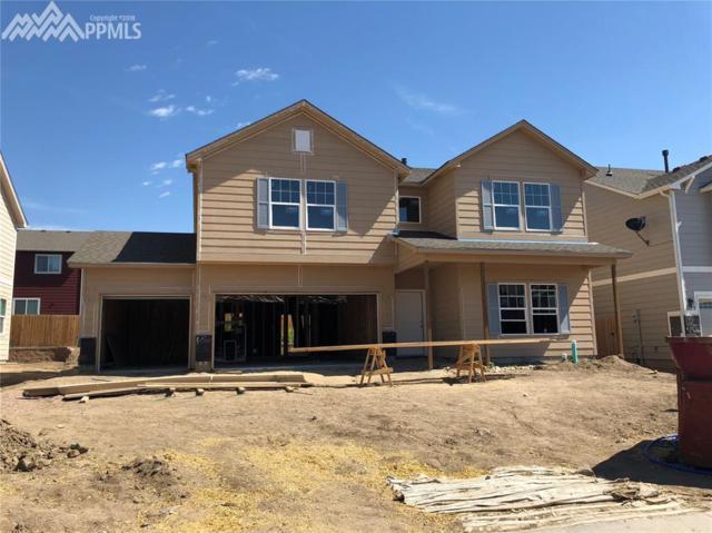 7186 New Meadow Drive, Colorado Springs, CO 80924 (#9478116) :: The Treasure Davis Team