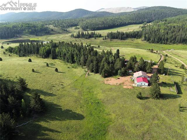 9974 Highway 67 Highway, Cripple Creek, CO 80813 (#9491154) :: Tommy Daly Home Team