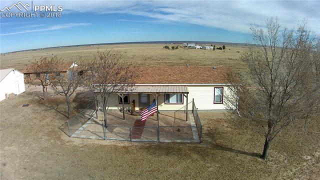 20480 Drennan Road, Colorado Springs, CO 80928 (#9499142) :: The Peak Properties Group