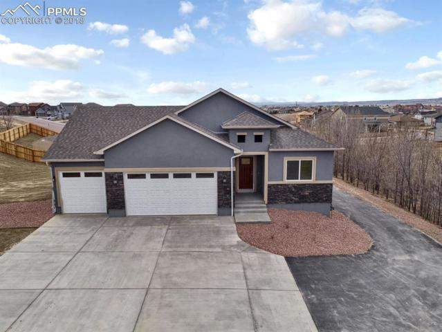 7793 Pinfeather Drive, Fountain, CO 80817 (#9533938) :: Action Team Realty