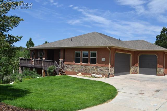 20413 Bald Mountain Court, Monument, CO 80132 (#9538692) :: 8z Real Estate
