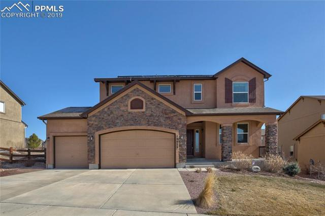 15625 Transcontinental Drive, Monument, CO 80132 (#9553414) :: Tommy Daly Home Team