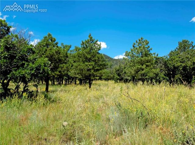 Lot 5 Oakmoor Heights, Colorado Springs, CO 80906 (#9554902) :: 8z Real Estate