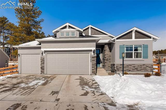 16386 Shadow Cat Place, Monument, CO 80132 (#9564064) :: The Kibler Group
