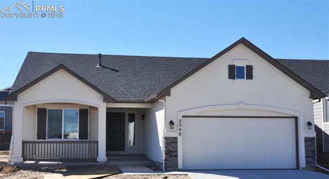 2540 Horsemanship Court, Colorado Springs, CO 80922 (#9569998) :: Action Team Realty