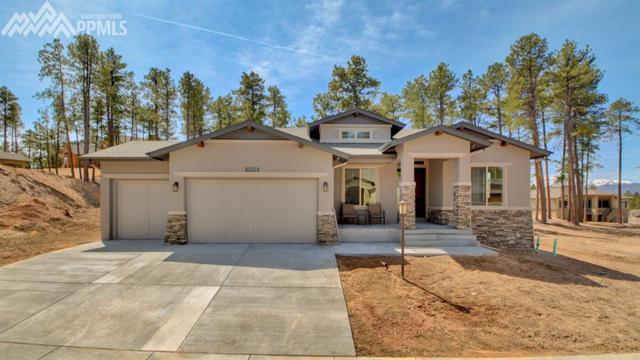 1745 Catnap Lane, Monument, CO 80132 (#9595150) :: Jason Daniels & Associates at RE/MAX Millennium