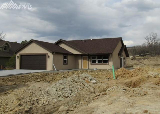 817 Meadow Lane, Palmer Lake, CO 80133 (#9606310) :: Colorado Home Finder Realty