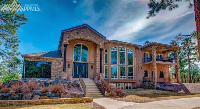 16204 E Pole Pine Point, Colorado Springs, CO 80908 (#9608793) :: Jason Daniels & Associates at RE/MAX Millennium