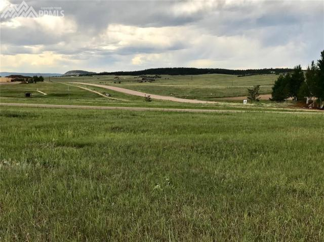 20409 Royal Troon Drive, Monument, CO 80132 (#9612288) :: 8z Real Estate