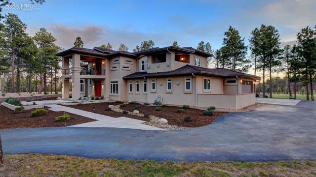 10957 Silver Mountain Point, Colorado Springs, CO 80908 (#9617412) :: 8z Real Estate