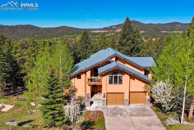 410 Falcons Rest Place, Woodland Park, CO 80863 (#9636156) :: 8z Real Estate